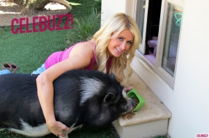 1Paris-Hilton-Animals-1024x682